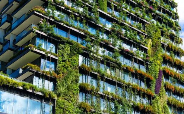 Les toitures végétalisées s'installent au-dessus des immeubles