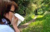 [Allergies] Les pollens sont de retour