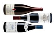 [Vins] Halte en terres bourguignonnes
