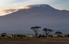 Découverte de la plus ancienne sépulture d'Afrique, il y a 78.000 ans