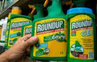[Roundup] Nouveau procès contre Bayer à Los Angeles